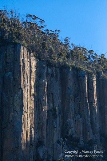 Australia, Bruny Island, Fur seal, Landscape, Nature, Photography, seascape, Tasmania, Travel, Wilderness, Wildlife