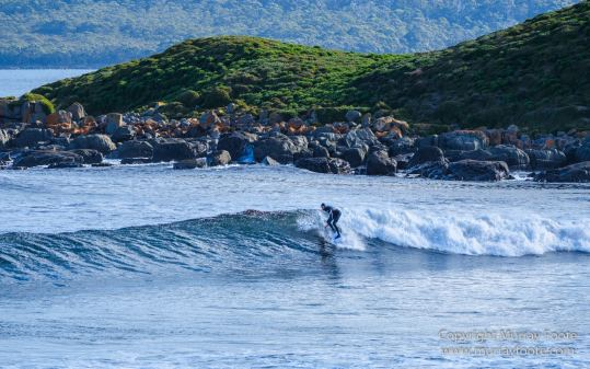 Australia, Bruny Island, Cloudy Bay, Jetty Beach, Landscape, Nature, Photography, seascape, Surfing, Tasmania, The Neck, Travel