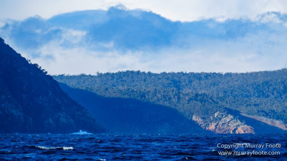 Australia, Dolphins, Fortescue Bay, Ketch, Landscape, Maria Island, Nature, Photography, Sailing, seascape, Tasmania, Travel, Wilderness, Wineglass Bay Sail Walk, Yachts