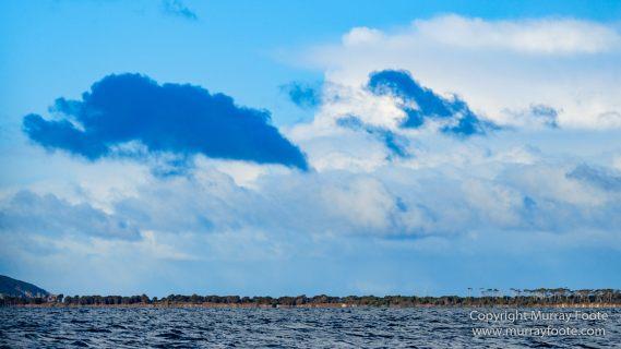 Australia, Dolphins, Fortescue Bay, Ketch, Landscape, Maria Island, Nature, Photography, Sailing, seascape, Tasmania, Travel, Wilderness, Wineglass Bay Sail Walk, Yachts