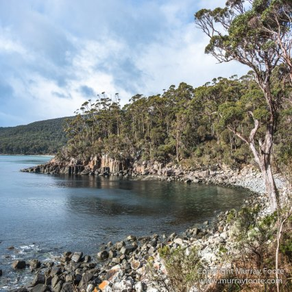 Australia, Canoe Bay, Fortescue Bay, Landscape, Macro, Nature, Photography, seascape, Tasmania, Travel, Wilderness