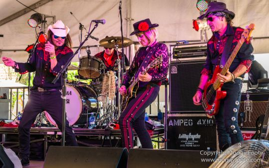 Australia, Blues, Blues Festivals, Live Music, Photography, Sydney, Sydney Blues Festival, Travel.