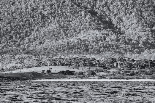 Australia, Black and White, Fortescue Bay, Ketch, Landscape, Maria Island, Monochrome, Nature, Photography, Sailing, Tasmania, Travel, Wilderness, Wineglass Bay Sail Walk, Yachts