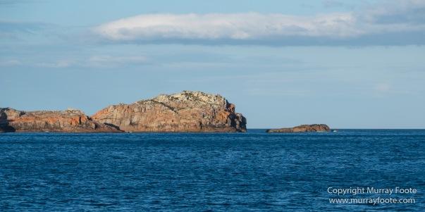 Australia, Freycinet Peninsula, Fur seal, Ketch, Little Tern, Nature, Photography, Sailing, seascape, Tasmania, Travel, Wilderness, Wineglass Bay, Wineglass Bay Sail Walk, Yachts