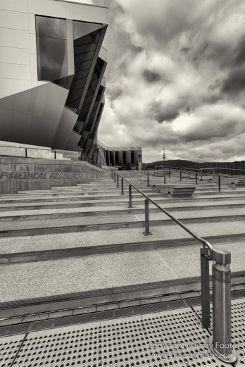 Architecture, Australia, Black and White, Canberra, Landscape, Macro, Monochrome, Nature, Photography, Travel, Wildlife