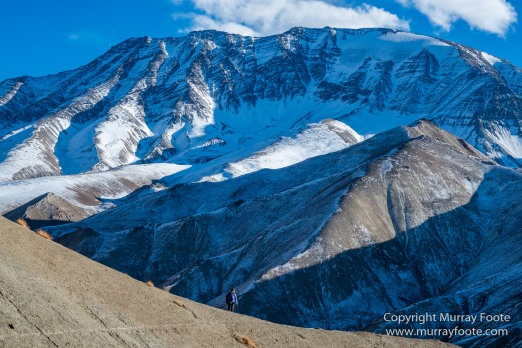 Hemis National Park, Horses, Ice, India, Ladakh, Landscape, Nature, Night Photography, Photography, Rumbak, Tibet, Travel, Wilderness