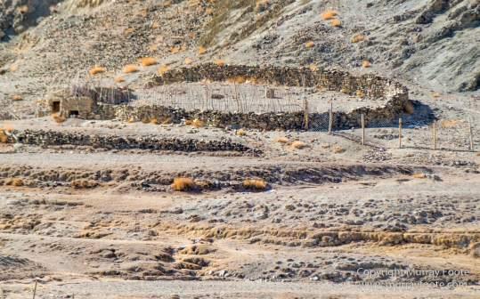 Architecture, Hemis National Park, Ice, India, Ladakh, Landscape, Macro, Nature, Photography, Rumbak, Snow Leopards, Tibet, Travel, Wilderness, Wolf