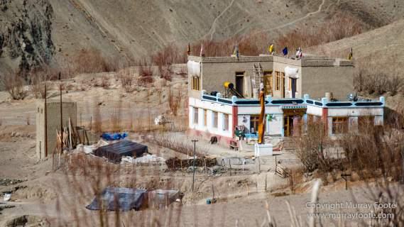 Blue Sheep, Common Redstart, Eurasian Magpie, Hemis National Park, Ice, India, Ladakh, Landscape, Nature, Photography, Rumbak, Tibet, Tibetan Snowcock, Travel, Wilderness
