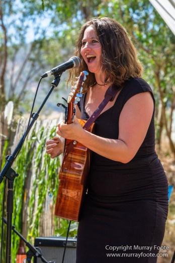 A Hitch to the Sticks, Australia, Blues Festivals, Dallas Frasca, Live Music, Photography, Travel, Victoria