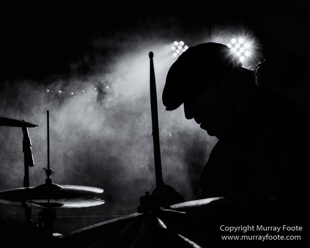 Australia, Black and White, Blues, Easter Island, India, Japan, Live Music, Madagascar, Monochrome, Patagonia, Photography, South Georgia, Travel, Wilderness, Wildlife