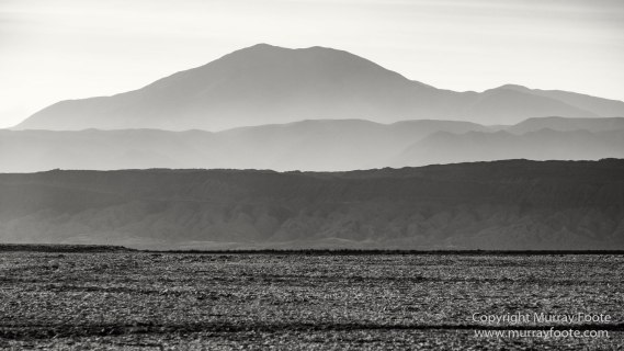 Atacama Desert, Black and White, Cacti, Chile, Flamingo, Geyser, Laguna Cejar, Laguna Chaxa, Laguna Tebenquiche, Monochrome, Nature, Photography, Tatio, Wilderness
