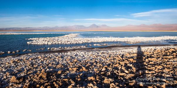 Atacama Desert, Chile, Laguna Cejar, Laguna Tebenquiche, Landscape, Nature, Panorama, Photography, Travel, Wilderness, Wildlife