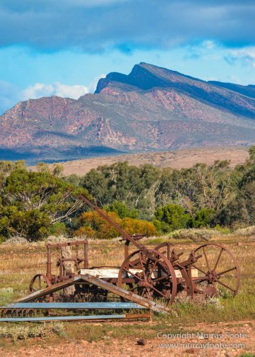 Australia, Flinders Ranges, Landscape, Macro, Merna Mora Station, Nature, Photography, South Australia, Travel, Wreck
