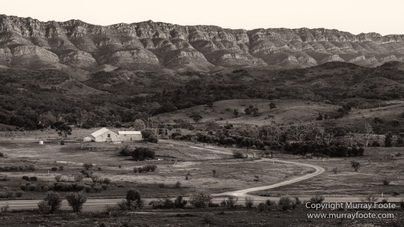 Architecture, Australia, Black and White, Flinders Ranges, Landscape, Monochrome, Nature, Photography, South Australia, Travel, Wilderness, Wildlife