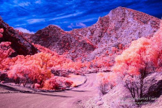 Australia, Flinders Ranges, Infrared, Landscape, Merna Mora Station, Nature, Parachilna, Photography, South Australia, Travel