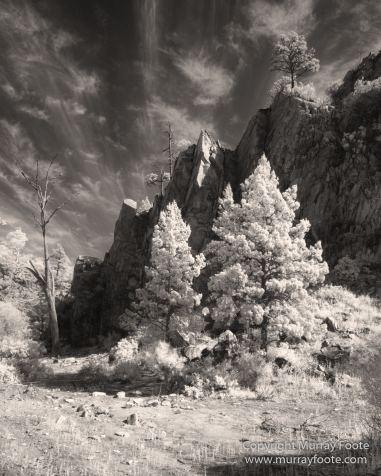 Architecture, Australia, Black and White, Flinders Ranges, Infrared, Landscape, Monochrome, Nature, Photography, South Australia, Travel, Wilderness, Wildlife