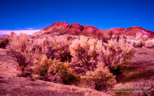 Australia, Flinders Ranges, Infrared, Landscape, Merna Mora Station, Nature, Photography, South Australia, Travel
