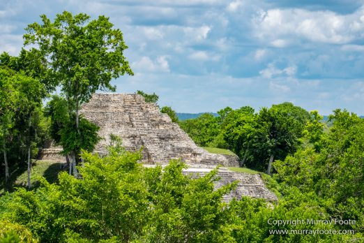 Archaeology, Architecture, Cormorant, Guatemala, Howler Monkeys, Landscape, Maya, Nature, Photography, Topoxte, Toucan, Travel, Wilderness, Wildlife, Yaxha