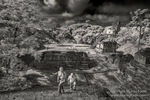 Archaeology, Architecture, Black and White, Guatemala, Infrared, Landscape, Maya, Monochrome, Nature, Photography, Tikal, Travel