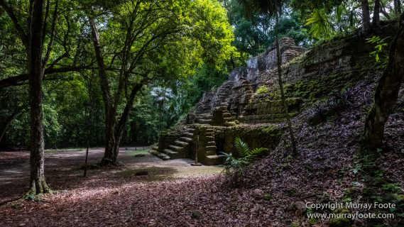Archaeology, Architecture, Guatemala, History, Infrared, Landscape, Maya, Nature, Photography, Tikal, Travel, Wildlife