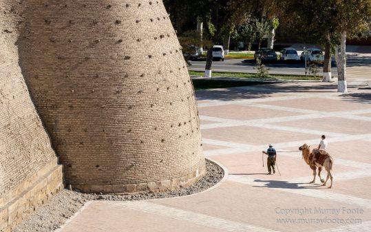 Architecture, Bukhara, Landscape, Photography, Street photography, Travel, Uzbekistan, Wildlife