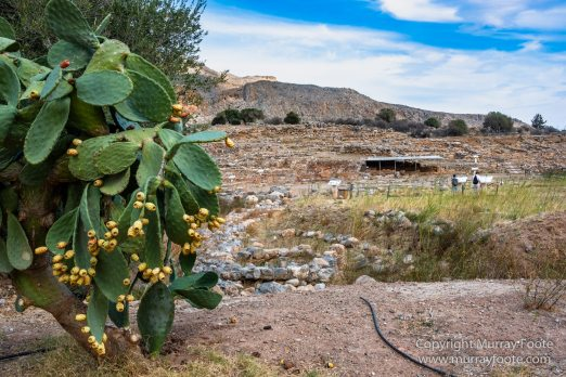 Archaeology, Architecture, Crete, Greece, History, Landscape, Photography, Street photography, Travel, Zakros