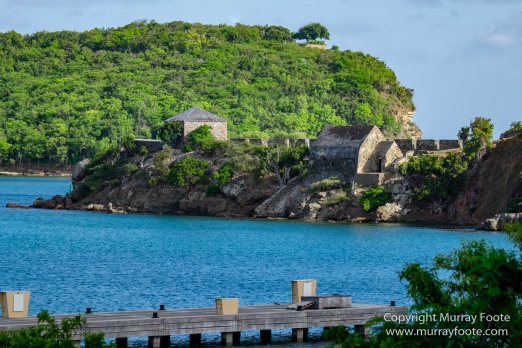 Antigua, Architecture, English Harbour, Fish, Landscape, Nature, Photography, Street photography, Travel, Wildlife