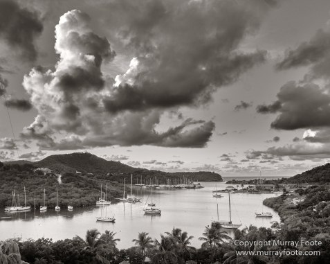 Antigua, Architecture, Black and White, History, Landscape, Macro, Monochrome, Nature, Photography, seascape, Street photography, Travel, Wildlife