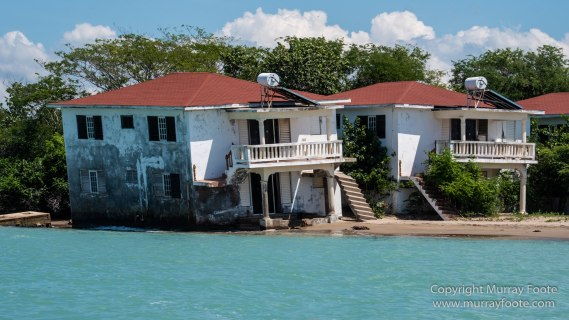 Architecture, Black River, Boats, Cattle Egret, Crocodiles, Jamaica, Landscape, Nature, Photography, seascape, Street photography, Travel, Treasure Beach, Wilderness, Wildlife