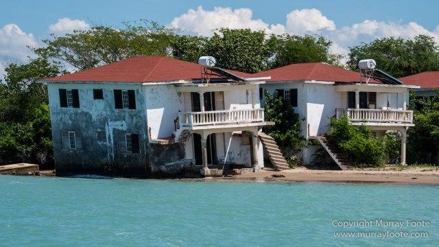 Architecture, Black River, Boats, Cattle Egret, Crocodiles, Jamaica, Landscape, Nature, Photography, seascape, Street photography, Travel, Treasure Beach, Wilderness, Wildlife