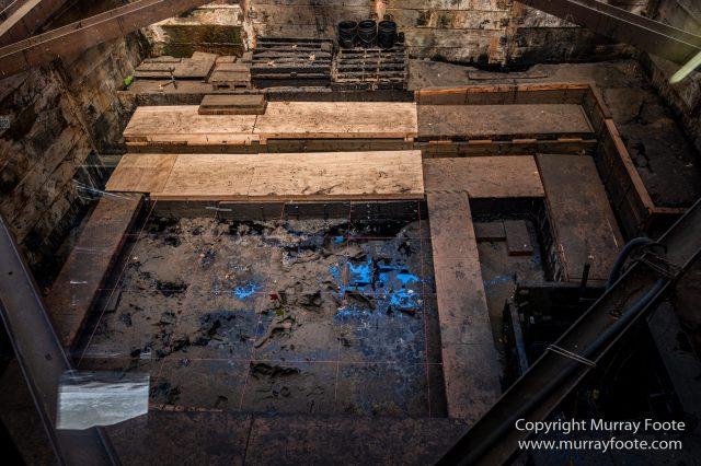 Archaeology, History, La Brea Tar Pits, Los Angeles, Photography, Travel