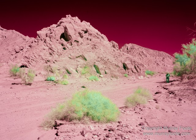 Desert, Ecology, Infrared, Landscape, Nature, Photography, Salton Sea, Travel, Wilderness