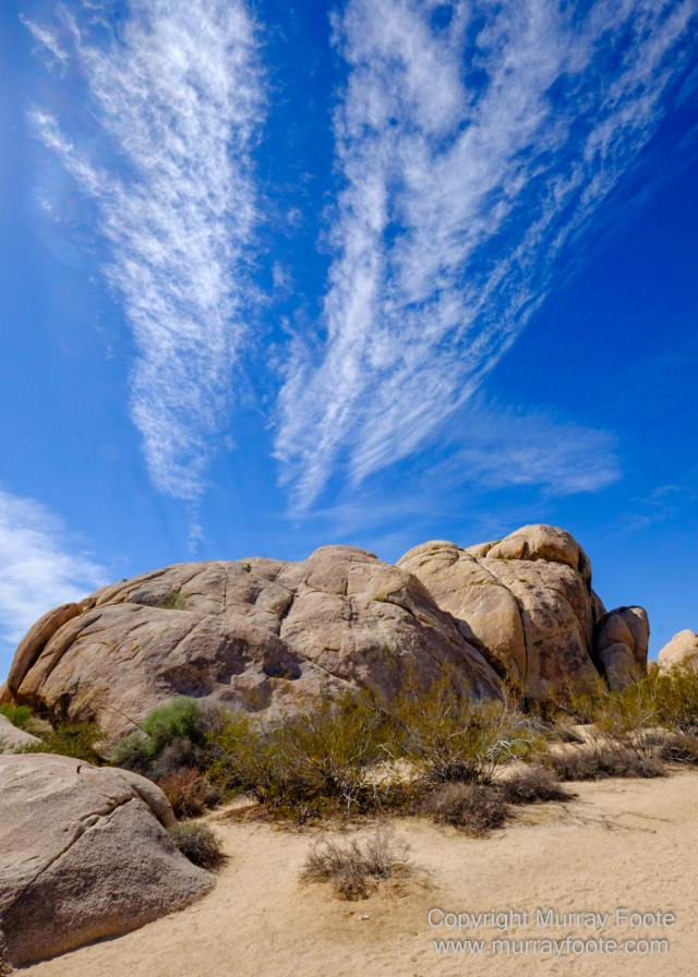 Desert, Hidden Valley, Joshua Tree National Park, Jumbo Rocks, Landscape, Nature, Photography, Travel, Wilderness, Wildlife