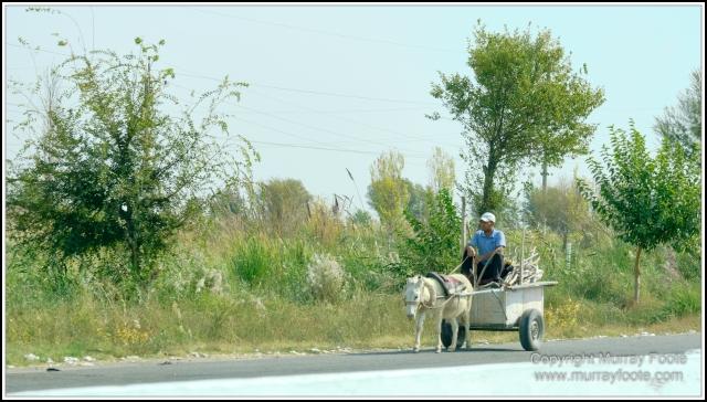 Landscape, Photography, Samarkand, Street photography, Tashkent, Travel, Uzbekistan